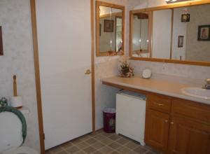 Bathroom w_Counter_Mirror