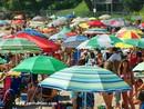 Beach Umbrellas at Beach
